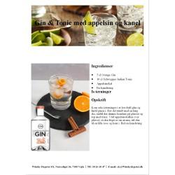 Opskrift på Gin & Tonic med appelsin og kanel